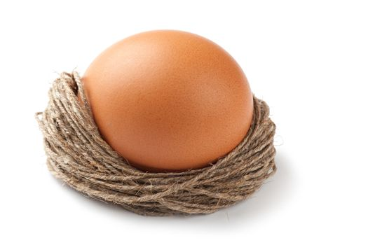 Macro view of brown egg isolated on the white