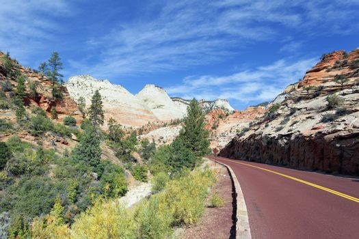 famous road in Zion National Park