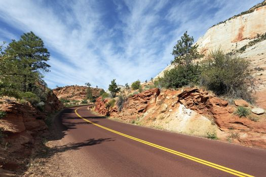 road in Zion National Park