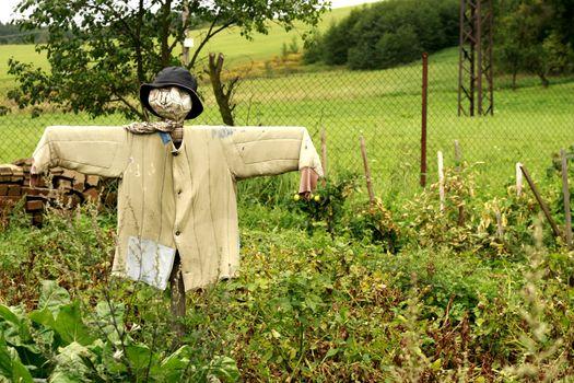 scarecrow in the garden as nice halloween symbol