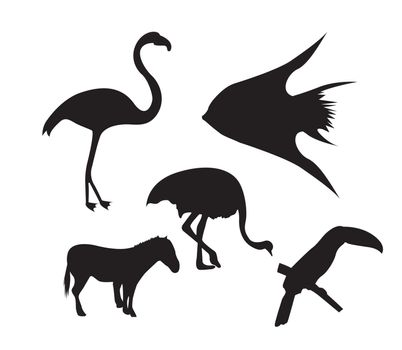 silhouette animals over white background. vector illustration
