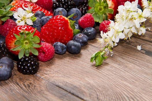 Berries and white flower on Wooden Background