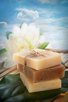 Spa natural soaps