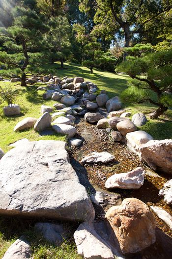 coniferous trees and rocks on a background of blue sky