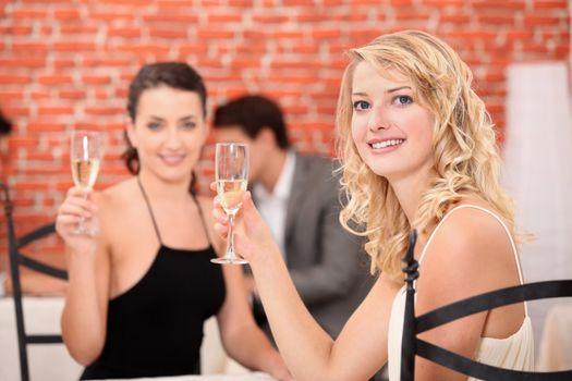 Two girlfriends drinking wine in a restaurant