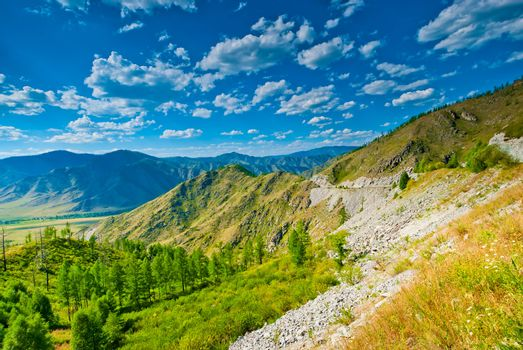 Summer mountain landscape in sunny weather. Altai.