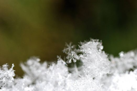 small snow crystals with green background