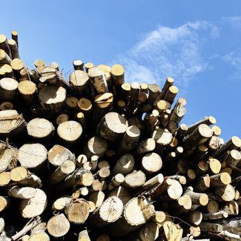 woodpile square