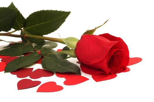 Red rose and paper hearts Valentines Day