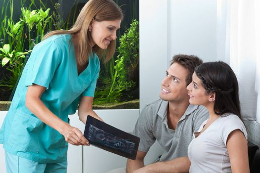 Female dentist showing dental x-ray to young couple in clinic
