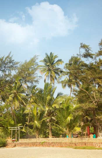 View on residential bungalow in the palm jungles. Vibrant colors and sun light