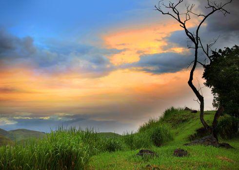 Scenic Misty morning scene in Brazil mountains