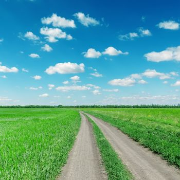 rural road to horizon under cloudy sky