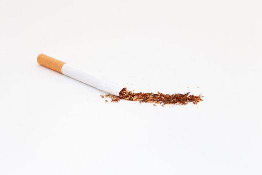 Inside a Cigarette