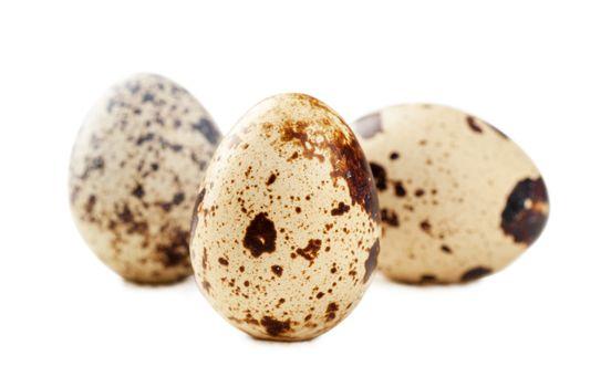 Closeup view of three quail eggs over white background