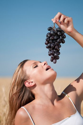 woman in wheat field eating grapes. Summer picnic.
