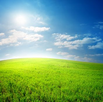 Green field and blue sky lit by the sun