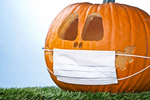 pumpkin covers a good laugh
