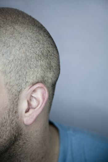 Back of a Shaved Head (ear detail)
