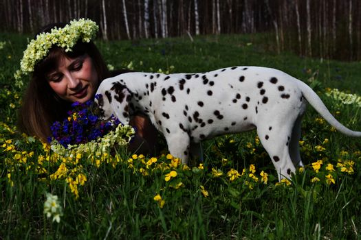 The girl and the Dalmatian puppy dog  in the forest clearing