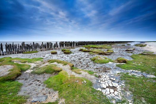 North sea bottom at low tide