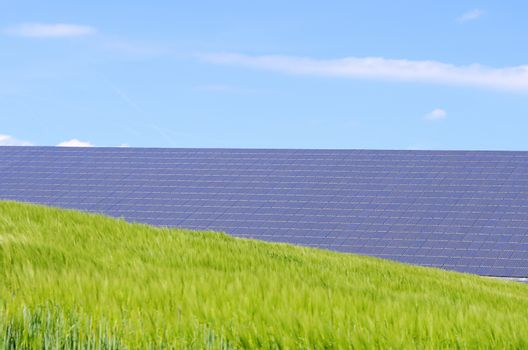 solar panels and green field