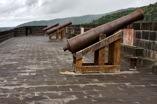 the fortification and cannons