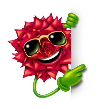 Florist flower sign with a fun smiling happy red rose character wearing sunglasses and pointing with green arms and hands to a blank sign as a concept of beauty of nature and plants business promotion.