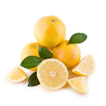 White grapefruits isolated