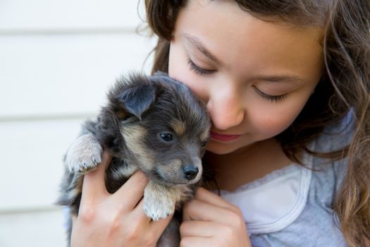 girl hug a little puppy dog gray hairy chihuahua