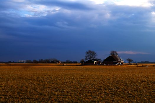 typical dutch farm before sunset