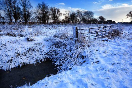 snow on Dutch farmland