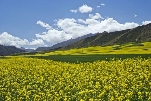 Taken in Gansu, China