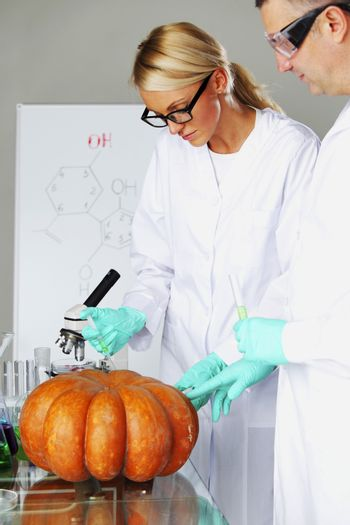 Scientist conducting genetic experiment with pumpkin
