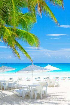 Luxury beach cafe