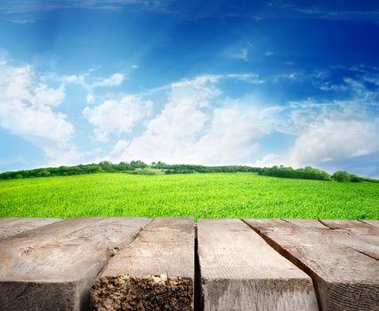 Meadow and wooden floor
