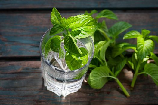 Fizzy drink with mint