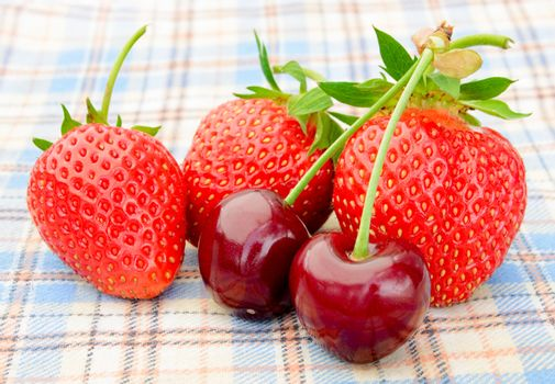 Ripe Sweet Cherries and Strawberries on the Checked Tablecloth