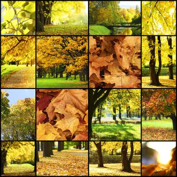 collage of autumn landscapes