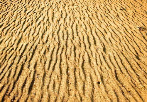 Yellow sand in desert. Texture of desert