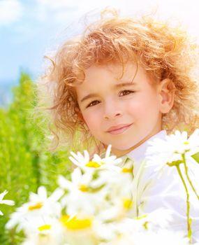 Little boy on daisy meadow