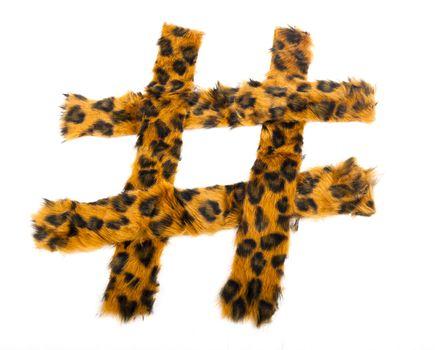 Leopard Hashtag