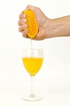 Fresh Orange Juice Squeeze