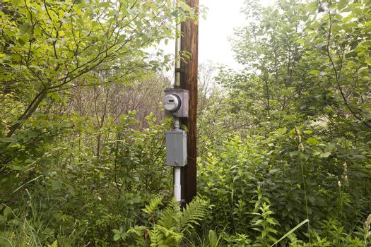 Rural Electric Box
