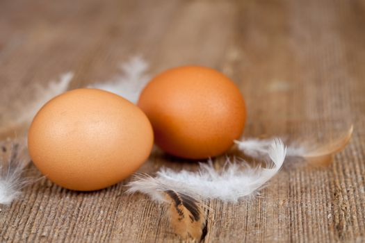two eggs and feathers