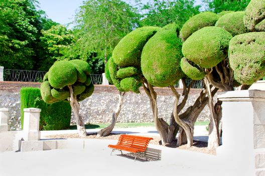 Trees and bench at park of the Pleasant Retreat in Madrid