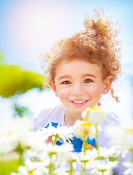 Little boy on daisy field