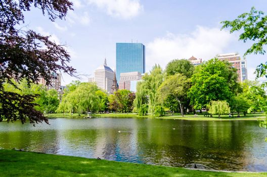 Boston Public Garden on a sunny day