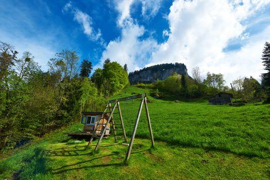 Swing at Alps