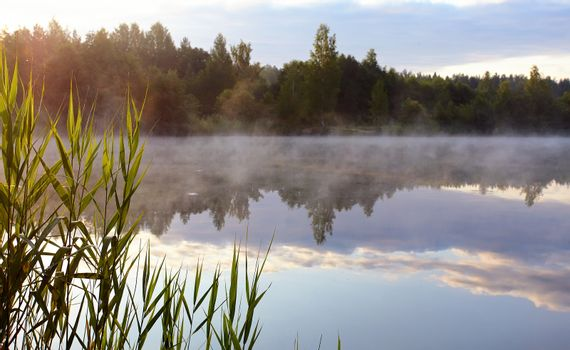 Fog on the lake.
